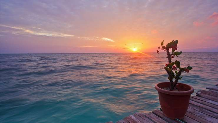 Сонце што тоне во море…